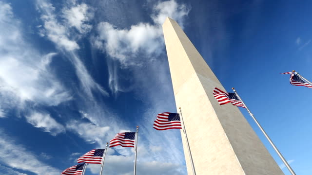 Flags by the Washington Monument video