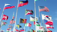 Flags in wind video