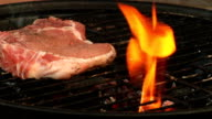 Flame grilled steak video