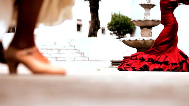 Flamenco Dancing with Audio video