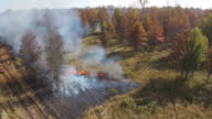 Flames moving towards the woods during a controlled fire video