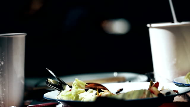 Flies swarm around food exposed to sunlight,dirt food. video