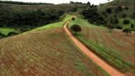 Flight Along Dirt Road South Of Belo Horizonte  - Aerial View - Minas Gerais, Desterro de Entre Rios, Brazil video