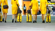 A Flight Crew Walking in the Airport video