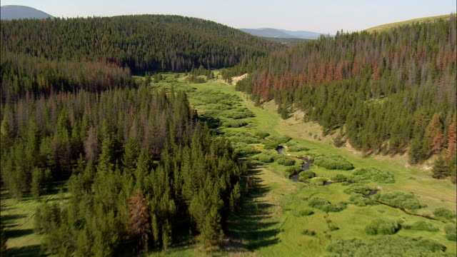 Flight Down Small Creek  - Aerial View - Montana,  Deer Lodge County,  helicopter filming,  aerial video,  cineflex,  establishing shot,  United States video