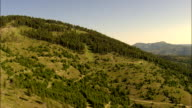 Flight Fast And Low Over Trees In Garnet Range  - Aerial View - Montana, Missoula County, United States video