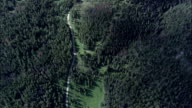 Flight Looking Down On Gallatin National Forest  - Aerial View - Montana, Gallatin County, United States video