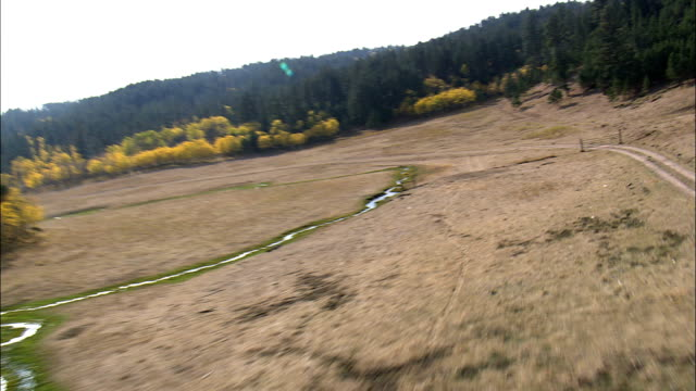 Flight Over Autumn Colors In Black Hills  - Aerial View - Wyoming, Weston County, United States video
