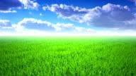 Flight over grass, cloudscape video