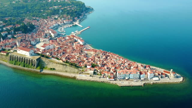 4K. Flight over old city Piran in the morning, aerial top panoramic view with old houses, Tartini Square, St. George's Parish Church, fortress and marina video