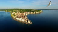 Flight with birds over old city Piran, aerial panoramic view with old houses, roofs, St. George's Parish Church, fortress and the sea. Slovenia. video