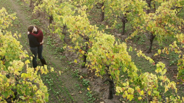 Flirting in the Vineyards of Wine Country video