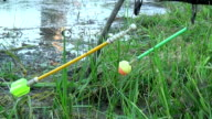 Float rod in the background of grass, fishing. video