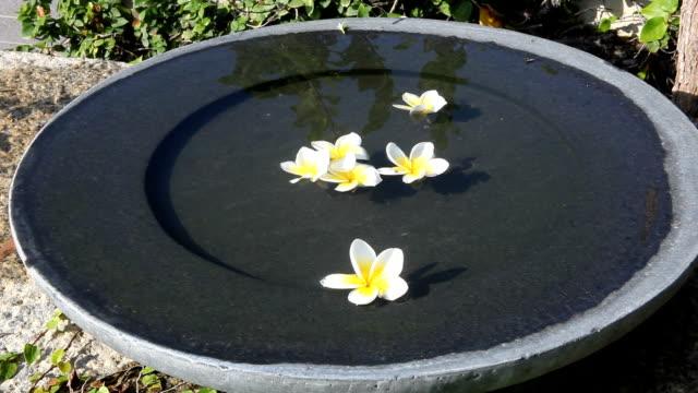 floating flowers video