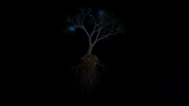 Floating Tree With Blue Fire Flies video