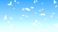 Flock of animated flying birds video