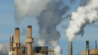 Flock of Birds Flies Through Factory Smoke/Steam For Warmth video