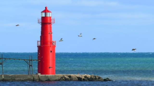 Flock of Geese Flies Past Red Lighthouse video