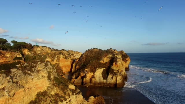 flock of seagulls over a rock on the ocean at sunset Algarve, Rotrugal video