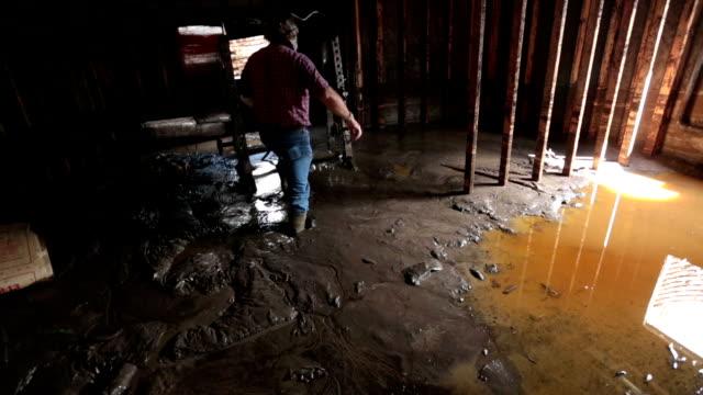 Flooded basement man walks through thick mud HD video
