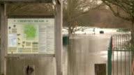 Flooded park video
