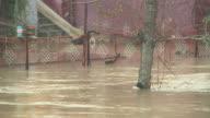 HD: Flooded street video