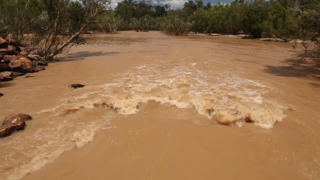 Flooding river - water flowing video