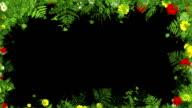 Floral frame video
