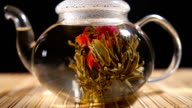 Florescence of Red Blooming Tea video