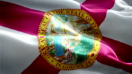 Florida state flag video