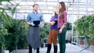 Florist communicating with customers in greenhouse video