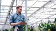 Florist making notes on tablet in greenhouse video