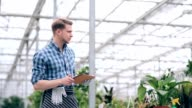 Florist with digital tablet in greenhouse video