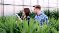 Florists keeps records of the plants on the tablet video