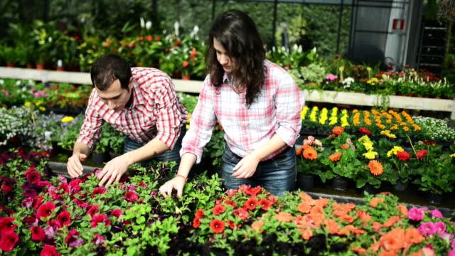 Florists owner arranging flowers video