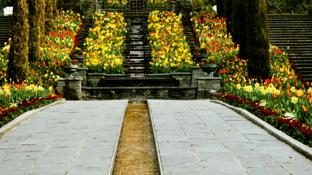 Flower alley with a waterfall in Germany on the island of Mainau. video