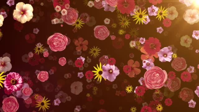 Flower blossoms (dark) - Loop video