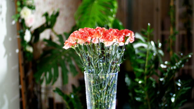 Flower bouquet in the rays of light, rotation, the floral composition consists of Bright orange turkish Carnation. In the background a lot of greenery video