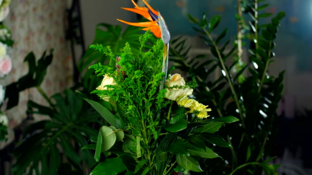 Flower bouquet in the rays of light, rotation, the floral composition consists of Strelitzia, Rose of avalanche, solidago, Protea, Brunia green, Chrysanthemum, aspidistra video