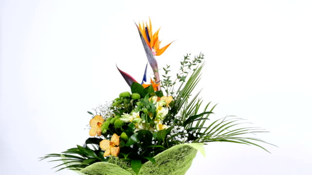 Flower bouquet on white background, rotation, the floral composition consists of Strelitzia, Chrysanthemum, Phalaenopsis orchid video