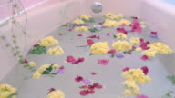 Flower Petals Fall onto the Surface of a Pink Bathtub video