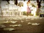 Flower Petals video