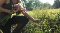 HD CRANE: Flower picking video