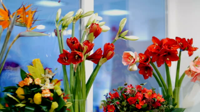Flower shop, on the show-window there are a lot of bouquets of flowers from pion-shaped roses, Amaryllis ferrari, floral stylish compositions with different flowers video