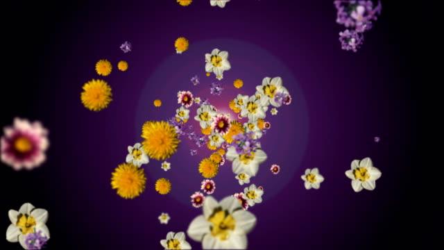 Flower shower video