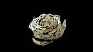 Flower transition video