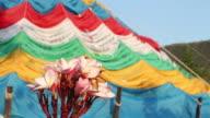 Flowers and Tibet prayer flags, HD video