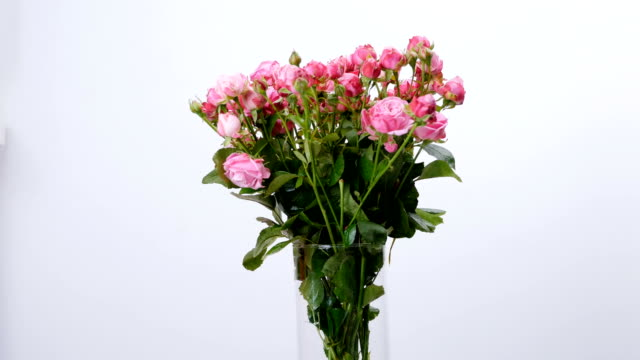 Flowers, bouquet, rotation on white background, floral composition consists of roses video