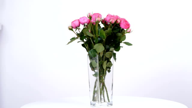 Flowers, bouquet, rotation on white background, floral composition consists of pink Roses pion-shaped video
