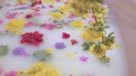 Flowers Float on the Surface of a Creamy Milk Bath At a Luxury Spa video